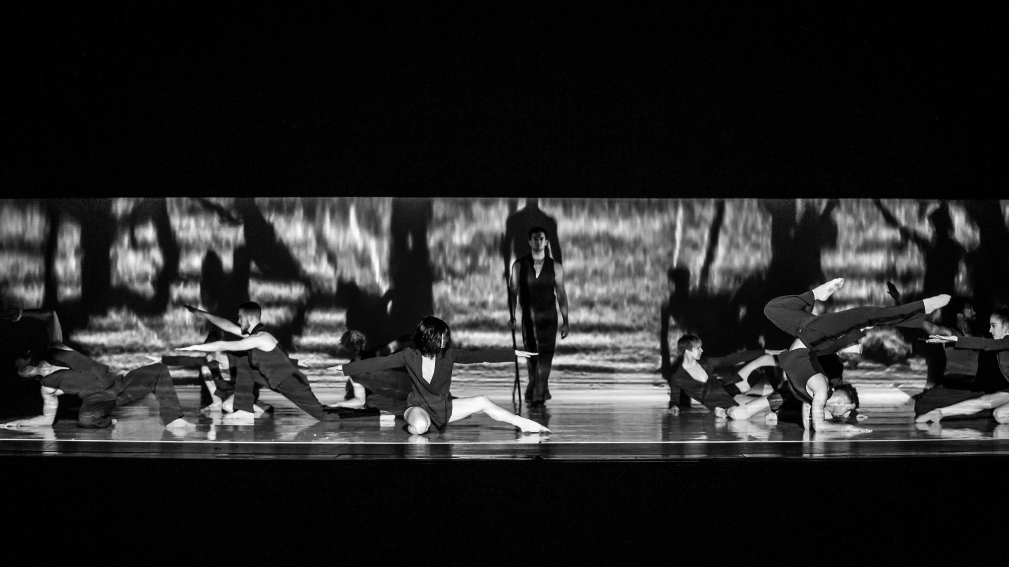 Photo (BJM Dance Me) © Thierry du Bois.